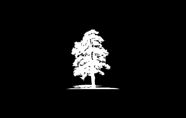 Los Almorchones - Estudio Rana - Diseño Gráfico y Comunicación