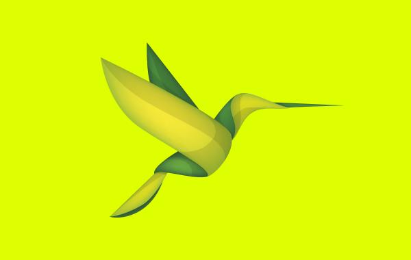 Ecove - Estudio Rana - Diseño Gráfico y Comunicación